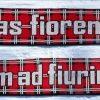 sciarpa lana premium media doppia 150×20 (5)